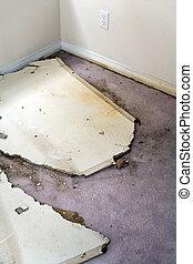 água, danificado, plasterboard, escoando, tapete