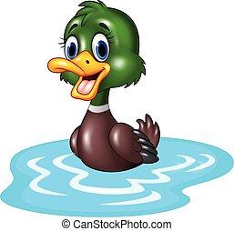 água, pato, caricatura, bóias