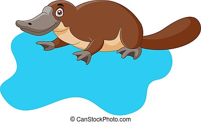 água, platypus, caricatura, cute