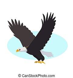 águia, calvo, isolado, fundo, branca, ícone, pássaro, predatório