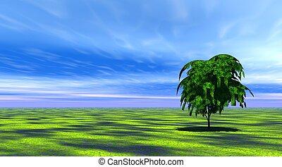árvore, capim, verde
