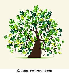 árvore, carvalho, verão