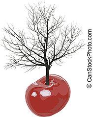 árvore cereja, cerejas