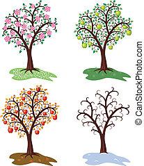 árvore, estações, jogo, vetorial, quatro, maçã