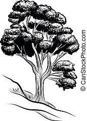 árvore, grande