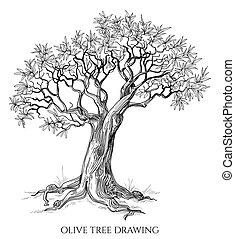 árvore, isolado, mão, vetorial, azeitona, desenhado