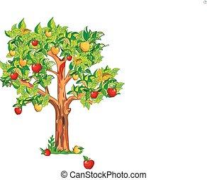 árvore, maçã
