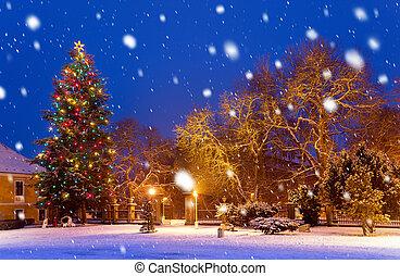 árvore, natal, nevada, noturna