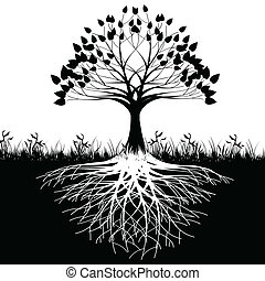 árvore, raizes, silueta