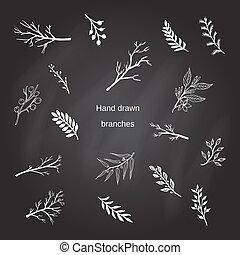 árvore, silhuetas, ramos, desenhado, mão