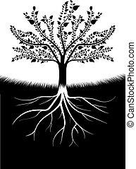 árvore, silueta, raizes