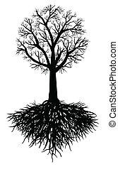árvore, vetorial, raiz