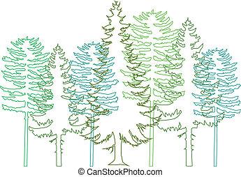 árvores abeto, vetorial