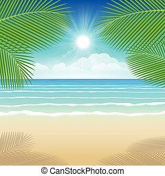 árvores., coco, mar, areia, fundo