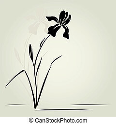íris, vetorial, flower.