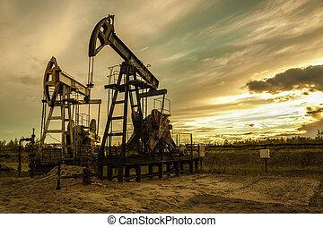 óleo, pumps.