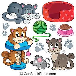 1, tema, cobrança, gato