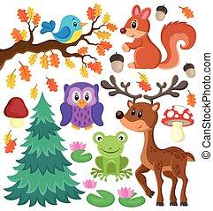 1, tema, jogo, animais, floresta