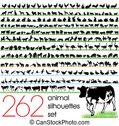 262, silhuetas, jogo, animal
