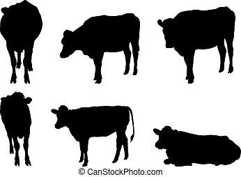 6, silhuetas, vaca