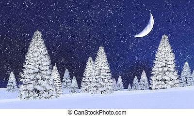abetos, noturna, nevada, nevado, meia lua