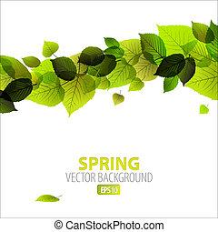 abstratos, primavera, fundo, floral