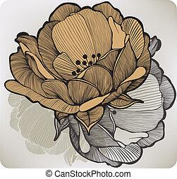 abstratos, vetorial, illustration., flower., florescer