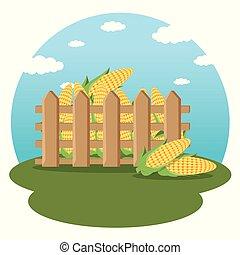 agrícola, conceito, agricultura