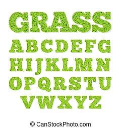 alfabeto, capim, verde