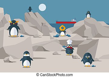 alimento, three-cap, personagem, rochoso, cozinheiro, costa, ter, pingüins, pássaro, pingüim, chapéu, vetorial, ter, s, almoço, de., illustration.