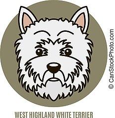 altiplano, retrato, branca, oeste, terrier