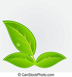 ambiental, vetorial, plant., ilustração, ícone