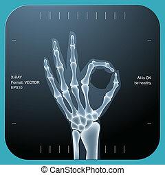 ambos, ok, símbolo, -, mão, human, raio x