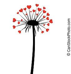 amor, fundo, dandelion., valentine