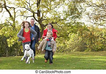 andar, família, parque, jovem, cão, através, ao ar livre