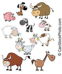 animais, caricatura, cobrança