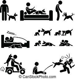 animal estimação, cão, relacionamento, homem