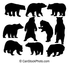 animal, urso, silhuetas, selvagem