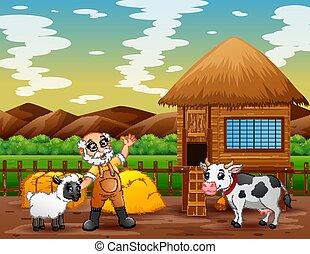 antigas, terra cultivada, animais, agricultor
