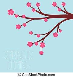 apartamento, estilo, primavera, -, ilustração, vetorial, flores, cereja, estação