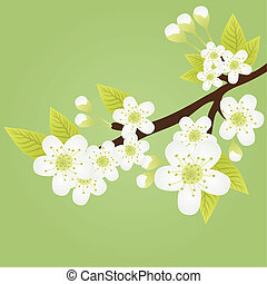 apple-tree, ramo