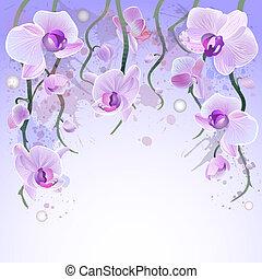 aquarela, vetorial, fundo, orquídeas