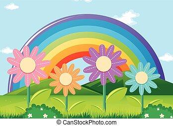 arco íris, flores, jardim