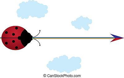 arco íris, ladybird, seta