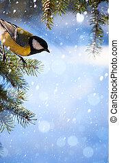 arte, árvore, neve, mamas, cartão natal