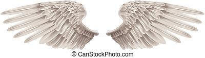 asas, branca