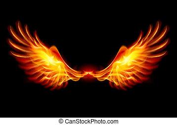 asas, queimadura