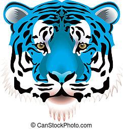 azul, cabeça tigre