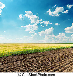 azul, campos, céu, profundo, nublado, sob, agricultura