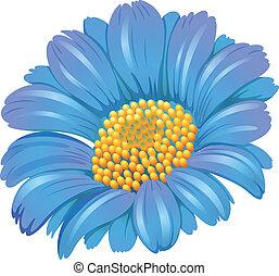 azul, fresco, flor